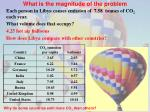 what is the magnitude of the problem