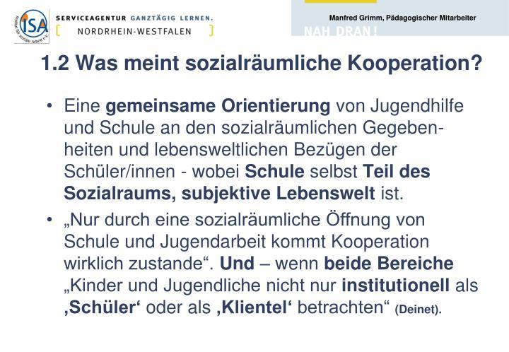1.2 Was meint sozialräumliche Kooperation?