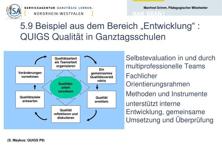 """5.9 Beispiel aus dem Bereich """"Entwicklung"""" : QUIGS Qualität in Ganztagsschulen"""