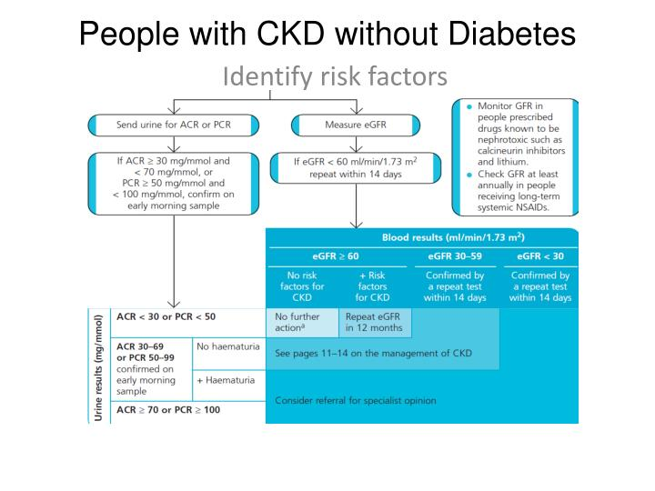 People with CKD without Diabetes