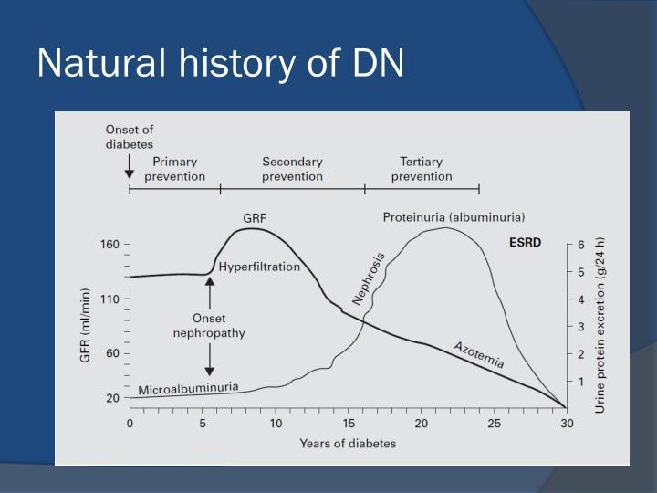 Natural history of DN