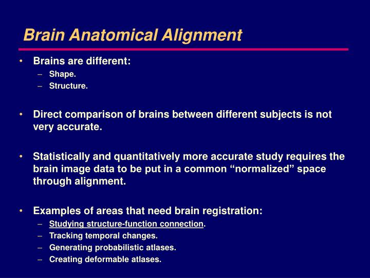 Brain anatomical alignment
