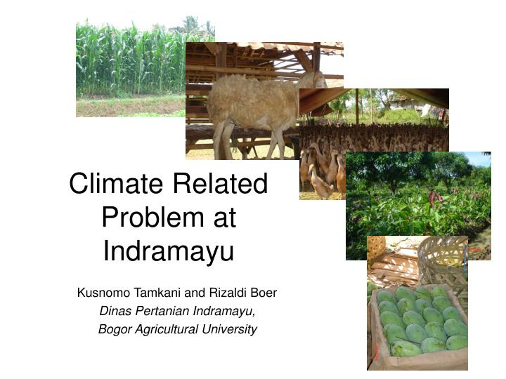 climate related problem at indramayu n.