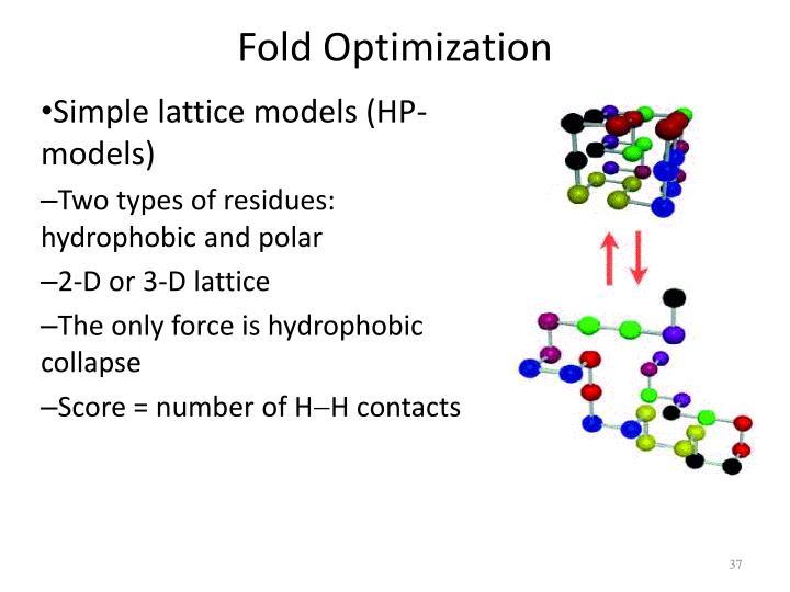 Fold Optimization