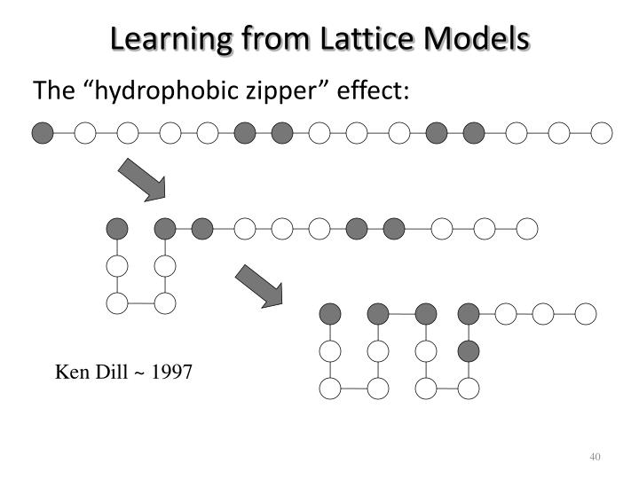 Learning from Lattice Models