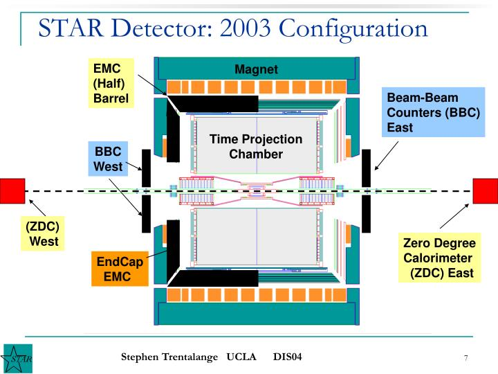 STAR Detector: 2003 Configuration