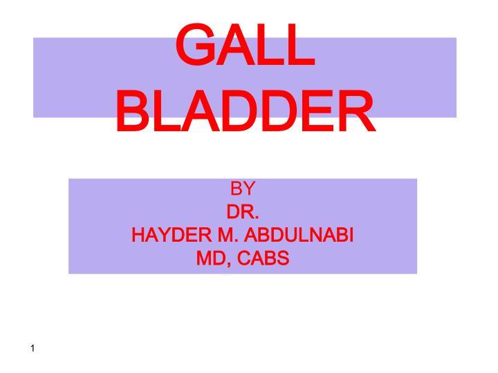 gall bladder n.