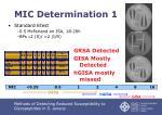 mic determination 1