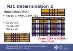 mic determination 2