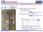 muon monitors1