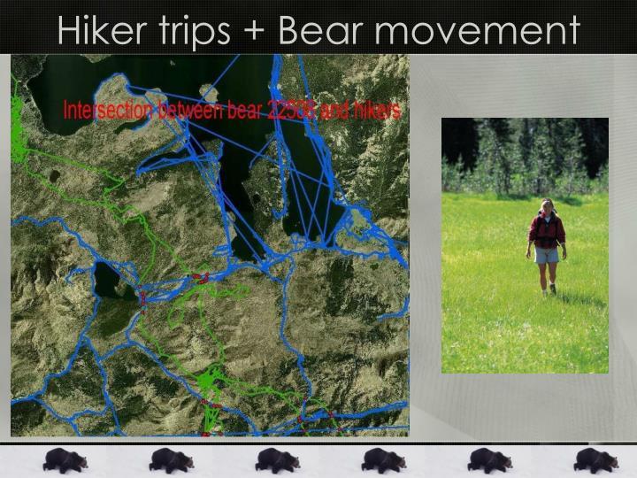 Hiker trips + Bear movement