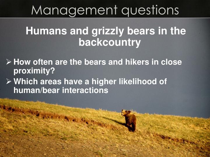 Management questions
