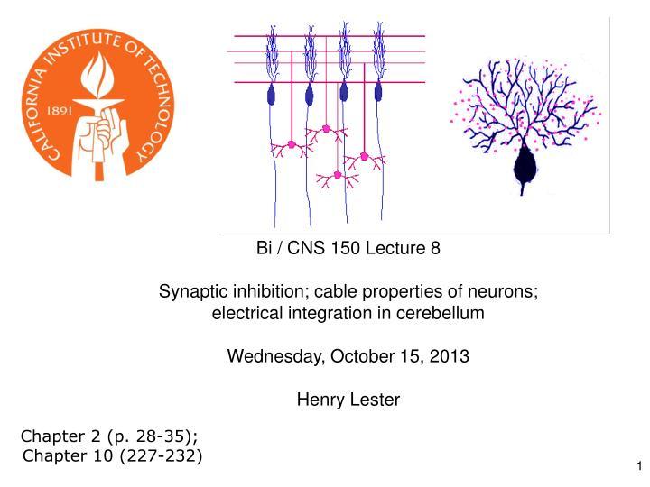Bi / CNS 150 Lecture 8