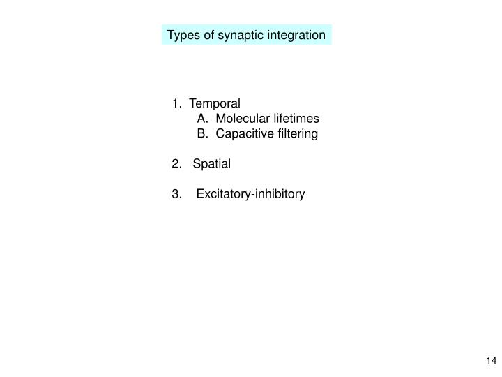 Types of synaptic integration