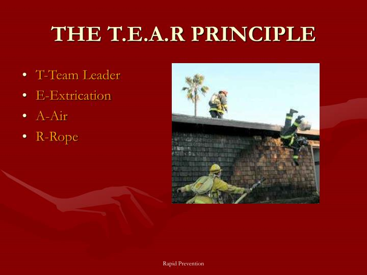 THE T.E.A.R PRINCIPLE