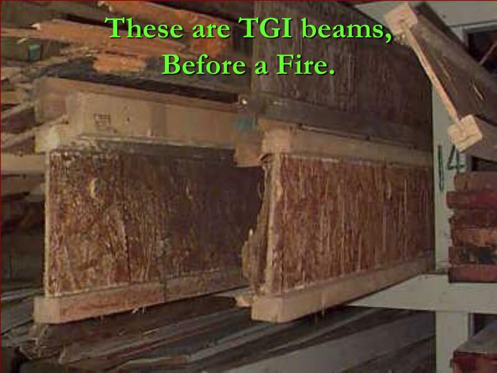These are TGI beams,