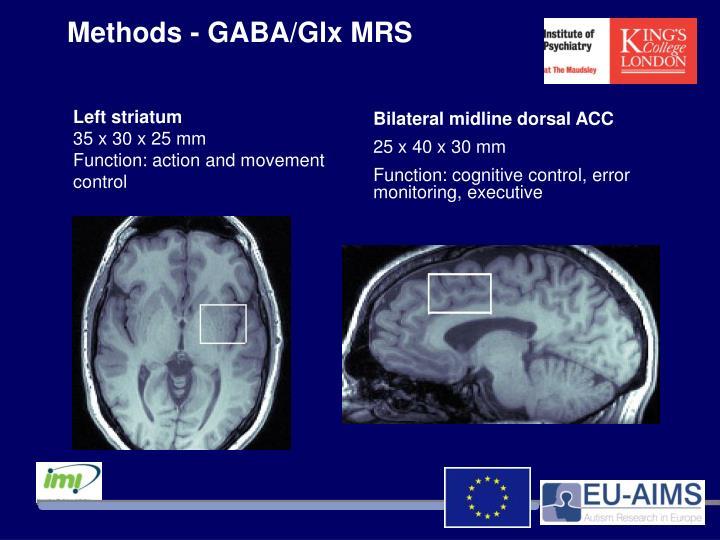 Methods - GABA/Glx MRS