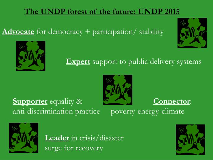 The UNDP forest of the future: UNDP 2015
