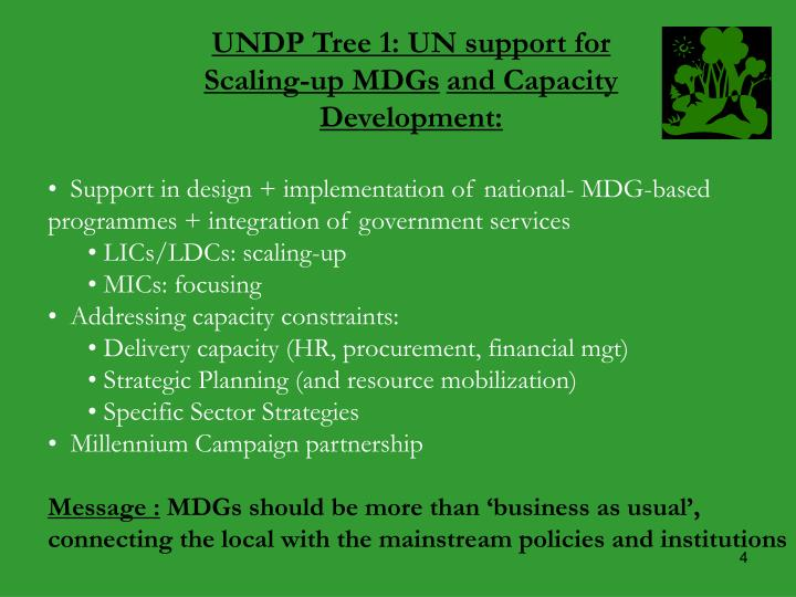 UNDP Tree 1: UN support for
