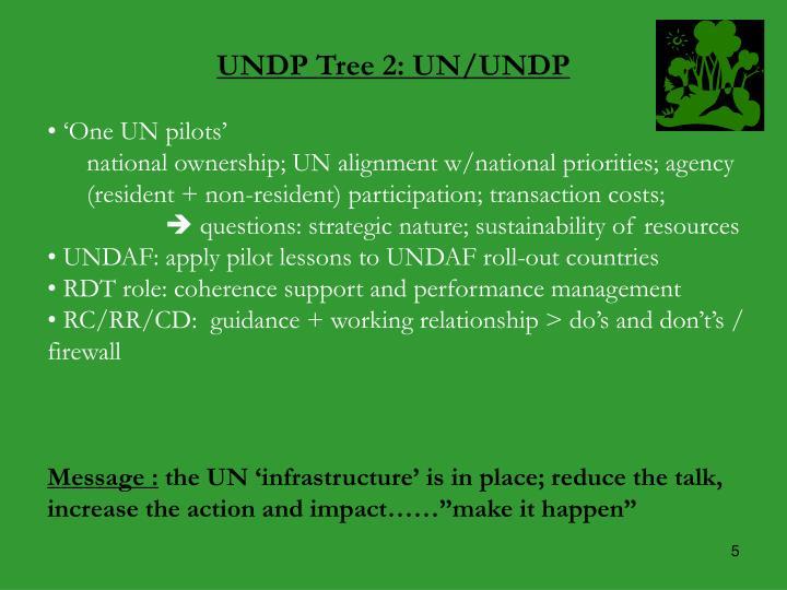 UNDP Tree 2: UN/UNDP