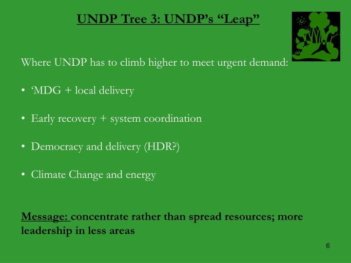 """UNDP Tree 3: UNDP's """"Leap"""""""