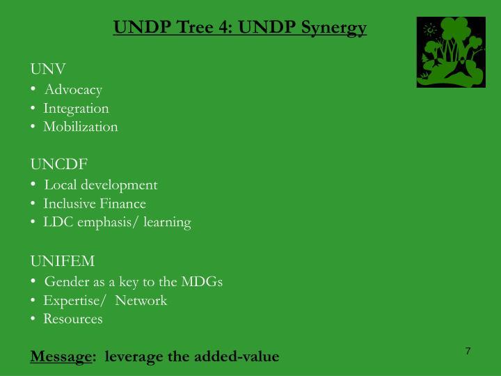UNDP Tree 4: UNDP Synergy