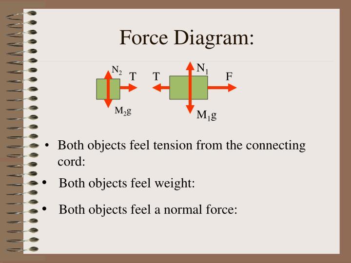 Force Diagram: