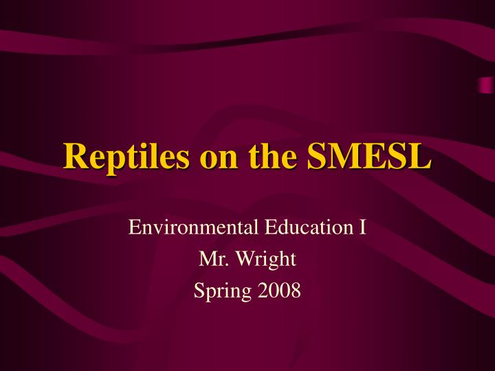 reptiles on the smesl n.