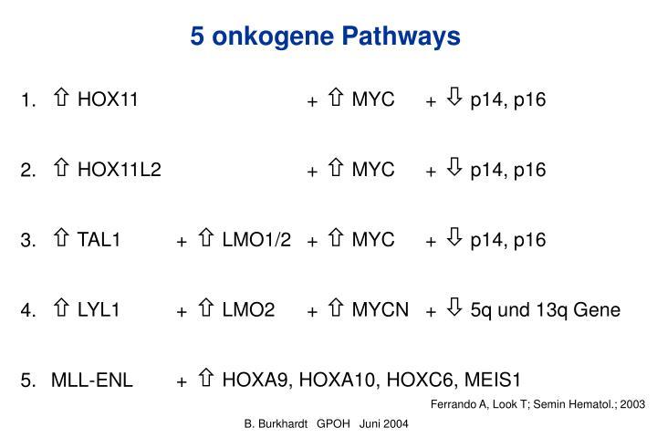 5 onkogene Pathways