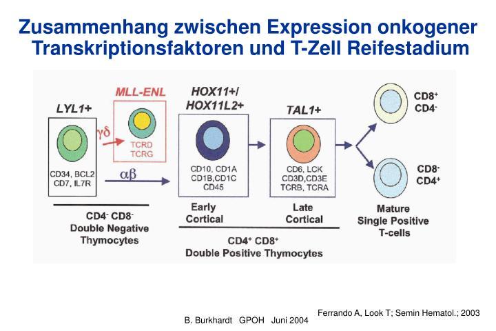 Zusammenhang zwischen Expression onkogener