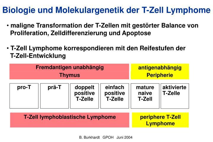 Biologie und Molekulargenetik der T-Zell Lymphome