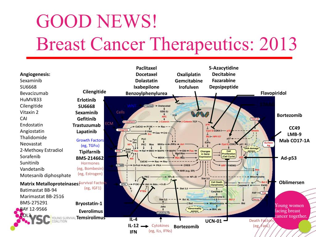 PPT - LET'S TALK ABOUT METASTATIC BREAST CANCER: Answers to