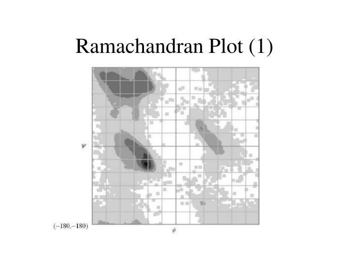 Ramachandran Plot (1)