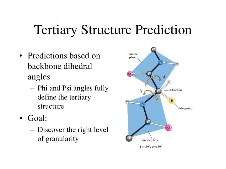 Tertiary Structure Prediction