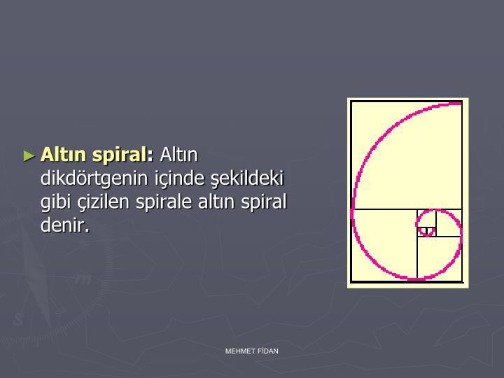 Altın spiral
