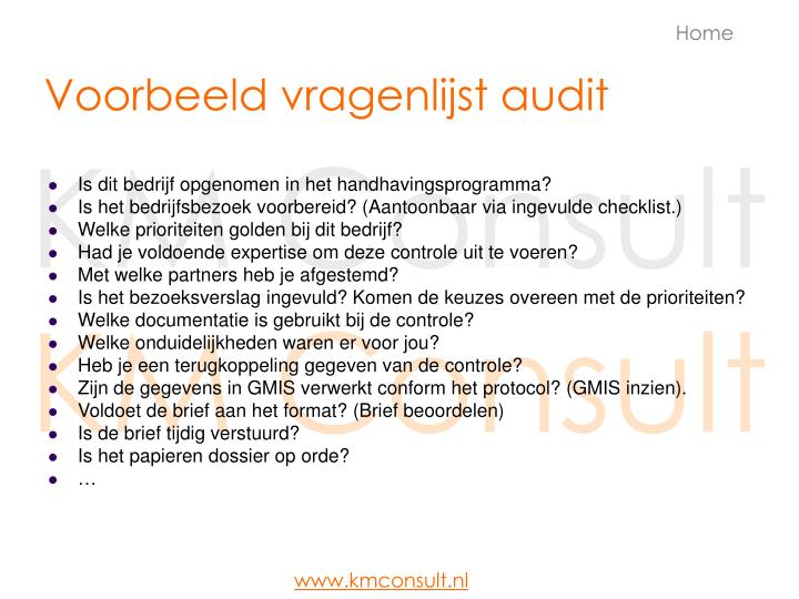 Voorbeeld vragenlijst audit