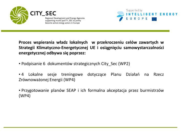 Proces wspierania władz lokalnych  w przekroczeniu celów zawartych w Strategii Klimatyczno-Energetycznej UE i osiągnięciu samowystarczalności energetycznej odbywa się poprzez:
