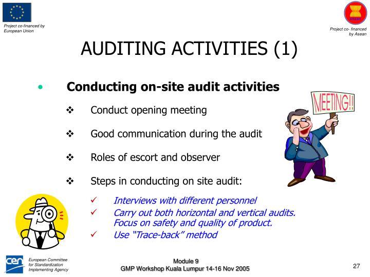 AUDITING ACTIVITIES (1)