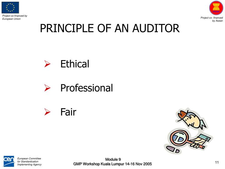PRINCIPLE OF AN AUDITOR