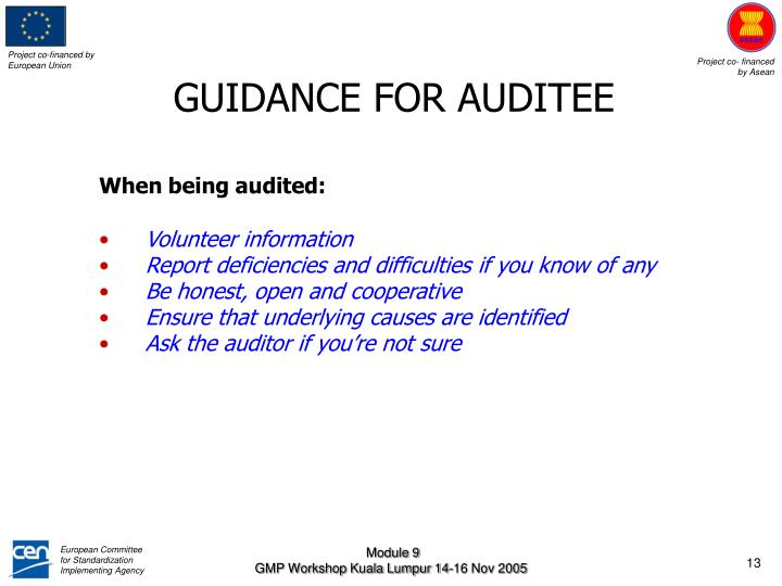 GUIDANCE FOR AUDITEE