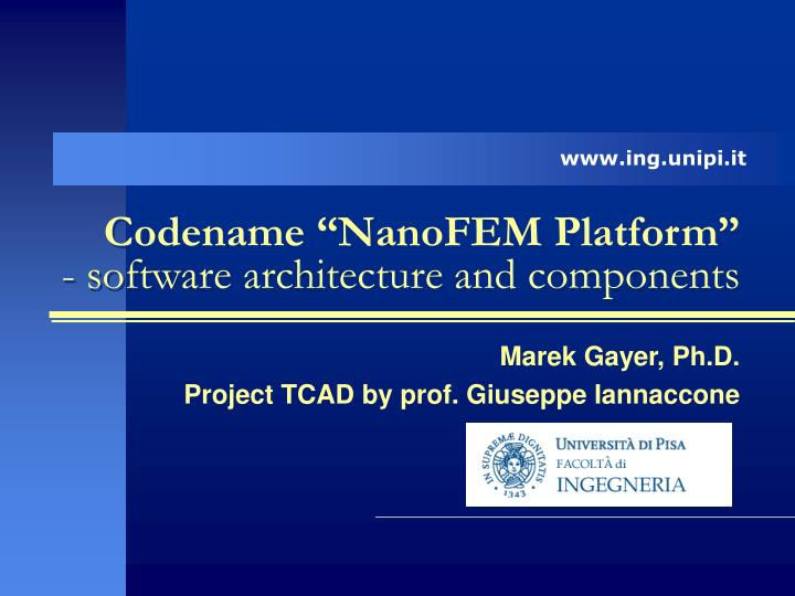 Codename nanofem platform software architecture and components