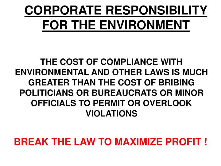 CORPORATE RESPONSIBILITY FOR THE ENVIRONMENT