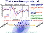 what the anisotropy tells us