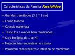 caracter sticas da fam lia fasciolidae