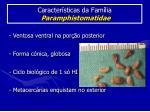 caracter sticas da fam lia paramphistomatidae