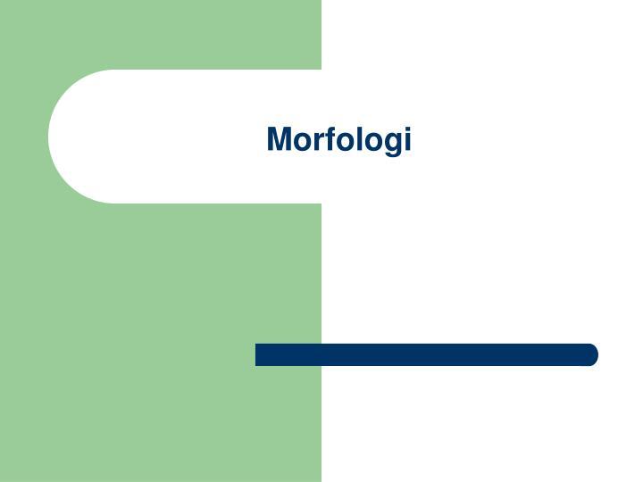 morfologi n.