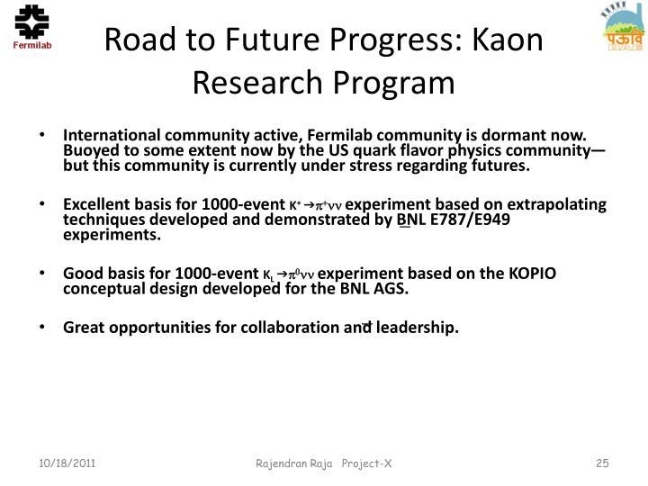 Road to Future Progress: Kaon Research Program