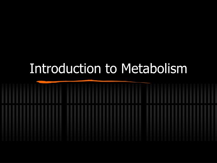 introduction to metabolism n.