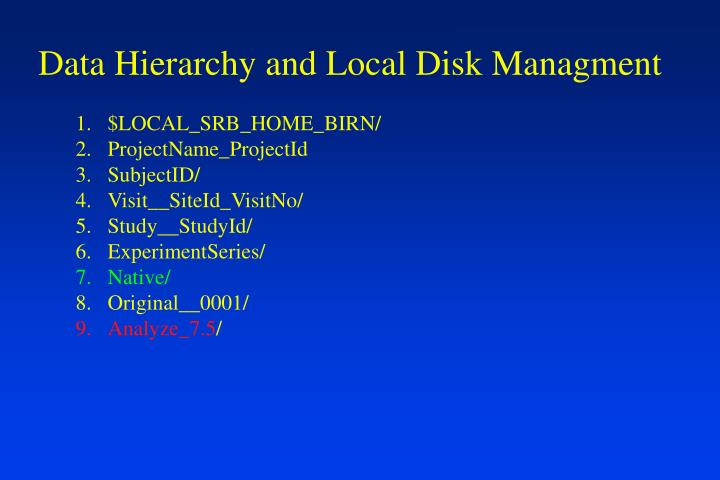 Data Hierarchy and Local Disk Managment