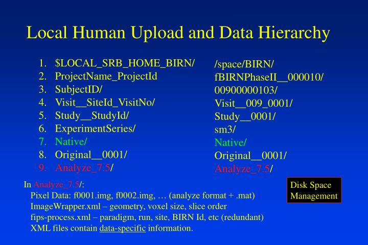 Local Human Upload and Data Hierarchy